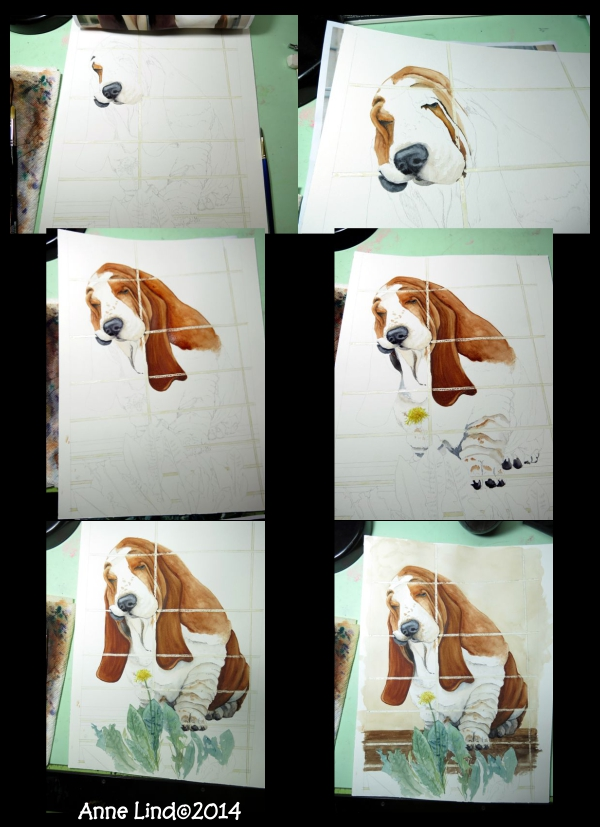 Basset Hound Watercolor by Anne Lind - Fetchit Graphics