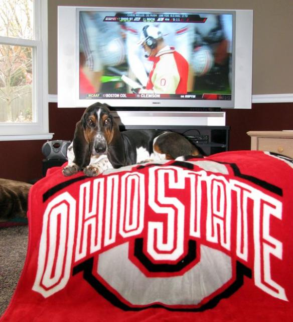 Norman guarding the OSU victory